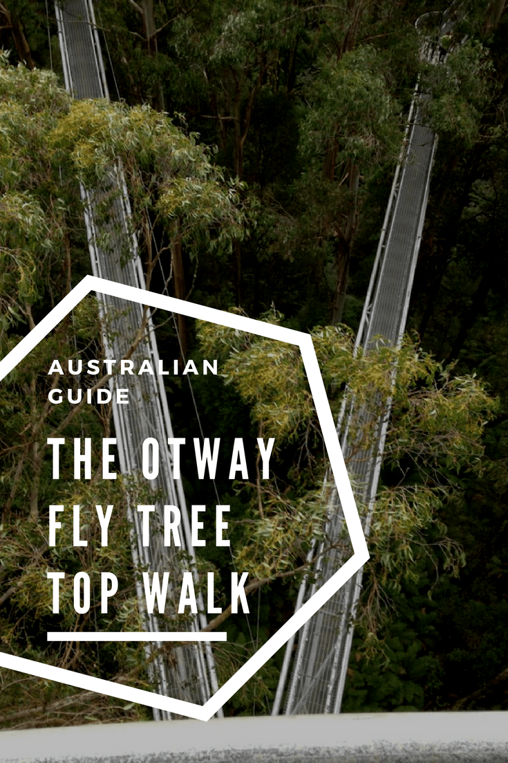 The Otway Fly Tree Top Walk