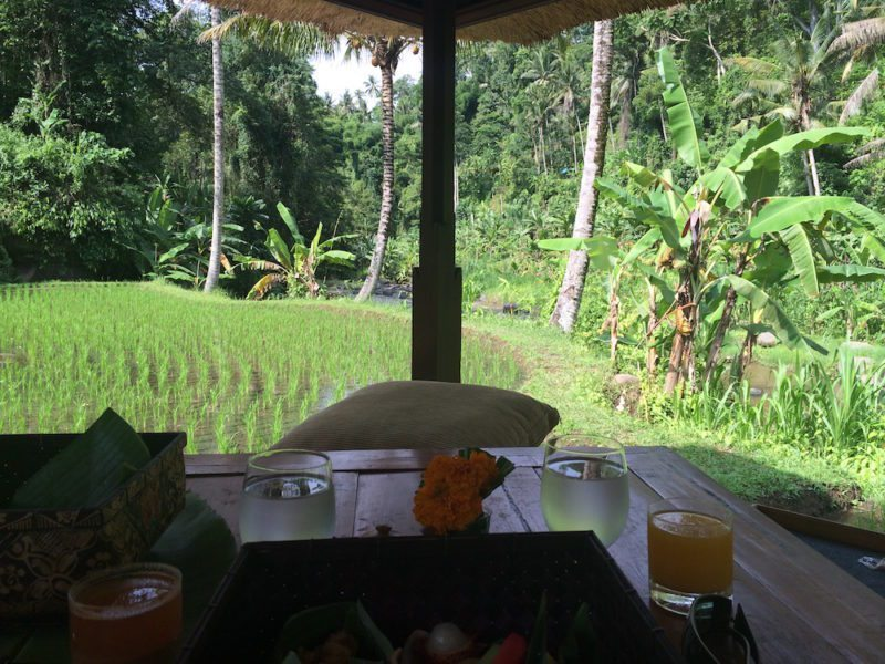 A Day in the Life of a Balinese Farmer at the Four Seasons Sayan