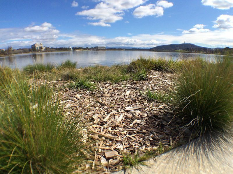 Canberra Bridge to bridge walk
