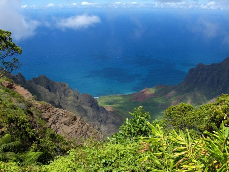 Experience the Natural Beauty of Kauai's South Shore