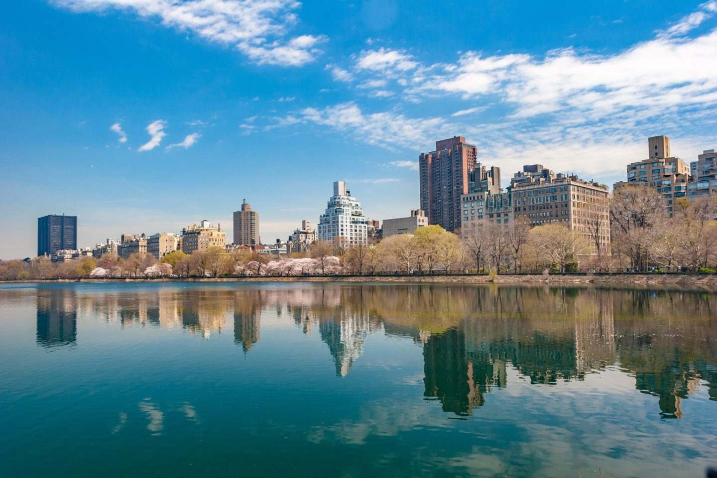 Don't miss seeing Central Park when you are in New York City