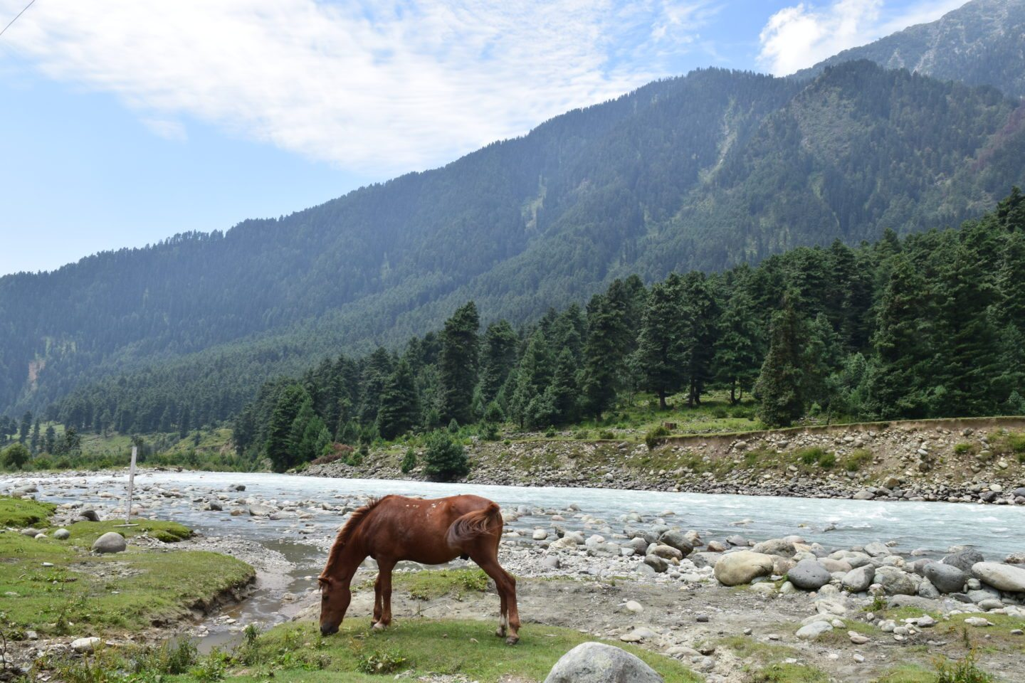 Budget Trip to Valley of Kashmir, India