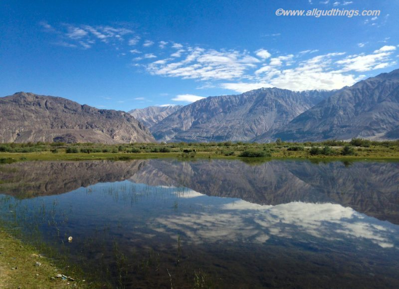 Calming Reflections in Nubra Valley