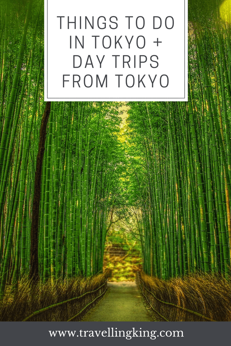 A few of the Coolest Things to do in Tokyo + Day trips From Tokyo