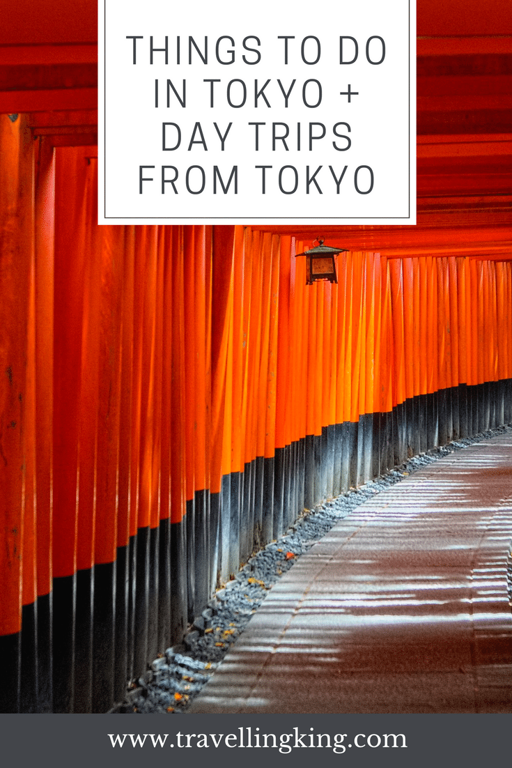 A few of the Coolest Things to do in Tokyo + Day trips From Tokyo.