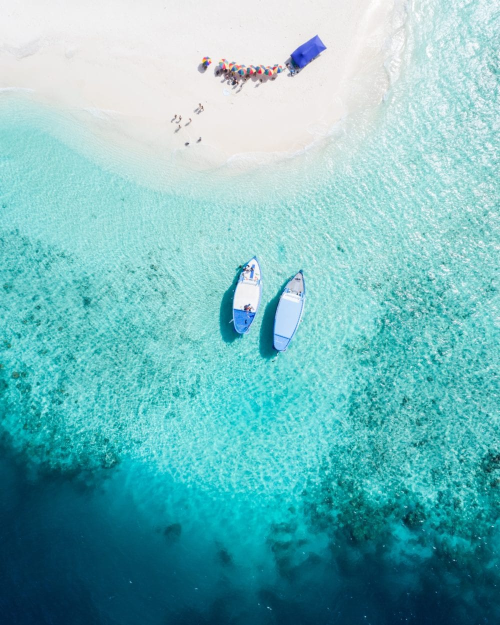 Fishing - Dolphin Cruise - 10 Things to do in the Maldives