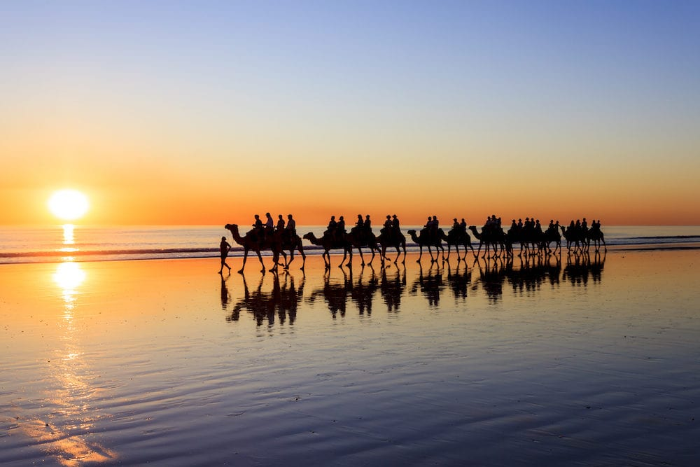 Camels walking along Cable Beach at sunset, Broome, Western Australia
