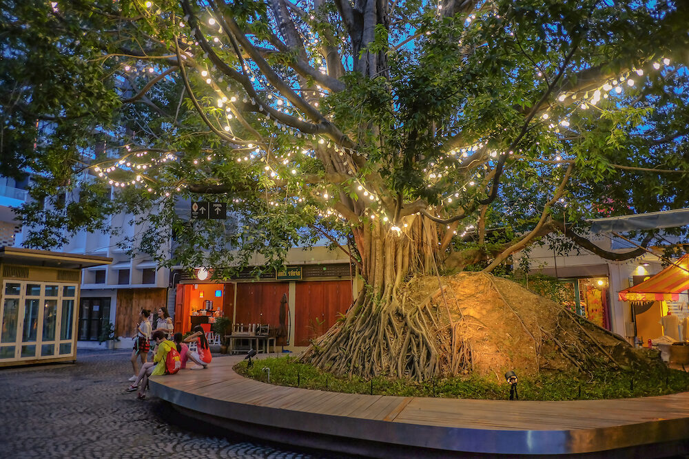 chiang mai/Thailand -:Unacquainted Tourists walking in community mall with beautiful light on the tree near nimman road at chiang mai city thailand time.chiang mai travel landmark