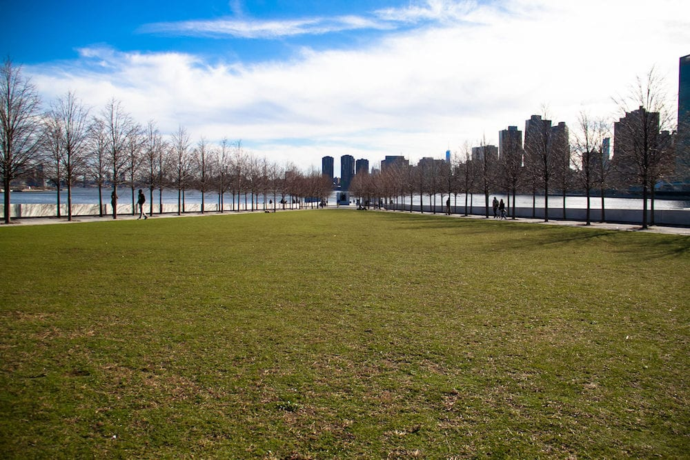 Grass field at Roosevelt island and Buildings in Manhattan with cloudy sky