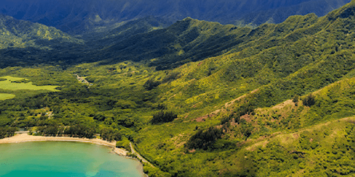13 Exciting Things to do in Honolulu