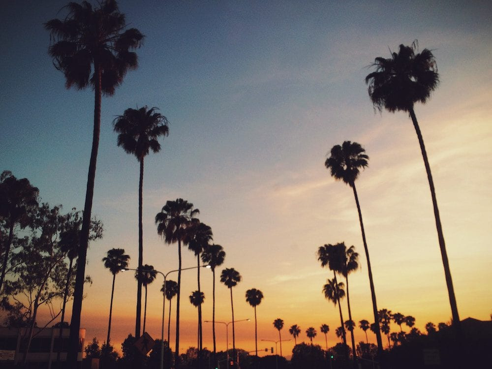 Hollywood Boulevard - 8 FREE Things to Do in Los Angeles