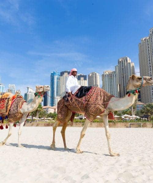 Dubai, UAE - Tour guide offering tourist camel ride on Jumeirah beach on in Dubai, United Arab Emirates. Luxury Dubai Marina skyscrapers in background.