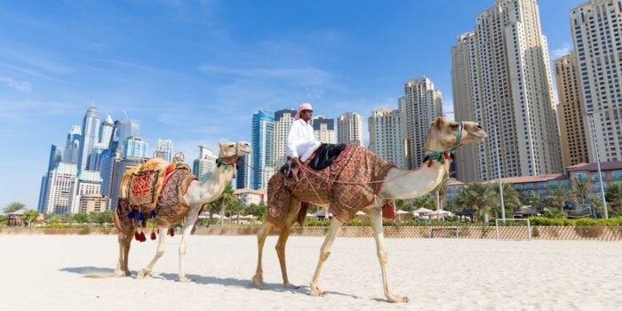 Dubai, UAE - Tour guide offering tourist camel ride on Jumeirah beach on in Dubai, United Arab Emirates. Luxury Dubai Marina skyscrapers in background.