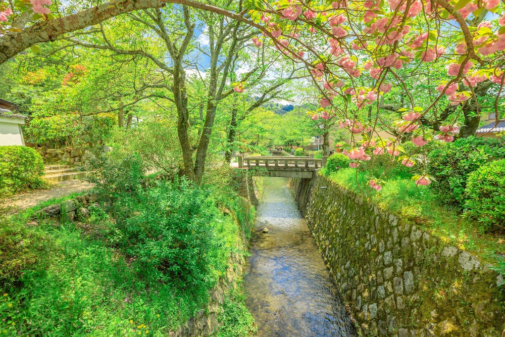Scenic landscape of Philosopher's walk also called Tetsugaku-no-michi, a pedestrian path that follows a cherry-tree-lined canal in Kyoto, Higashiyama district, Japan.