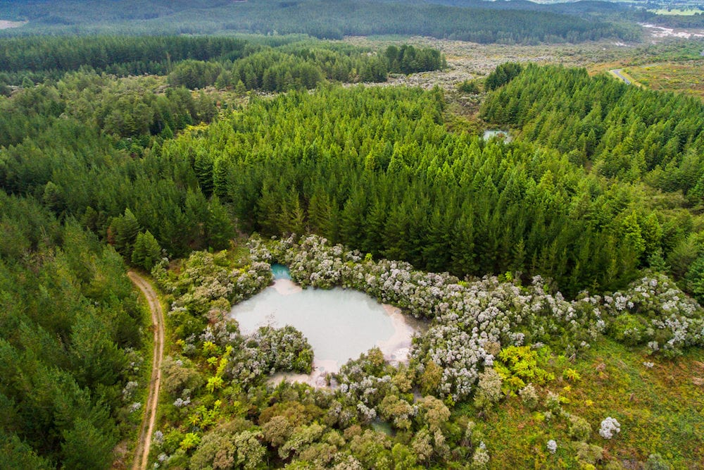 Bubbling Hot Mud Pool in Rotorua New Zealand from Aerial View by Drone. Rotorua in North Island of New Zealand is known for geothermal activity and hot mud pool locating around the Rotorua Lake.