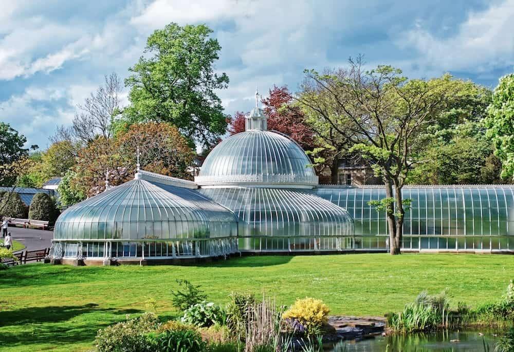 Glasgow UK - Glasgow Botanic Gardens. Glasgow is the city in the Lowlands in Scotland in the United Kingdom.