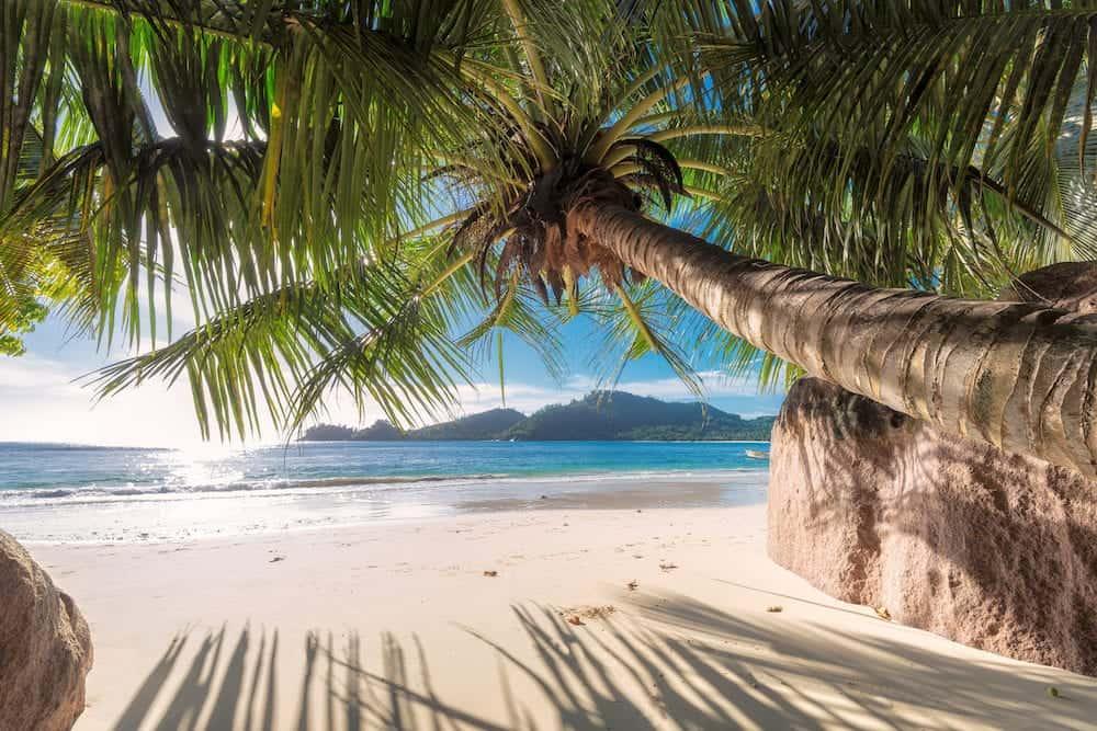 Beach on Seychelles. Anse Takamaka of Mahe island, Seychelles