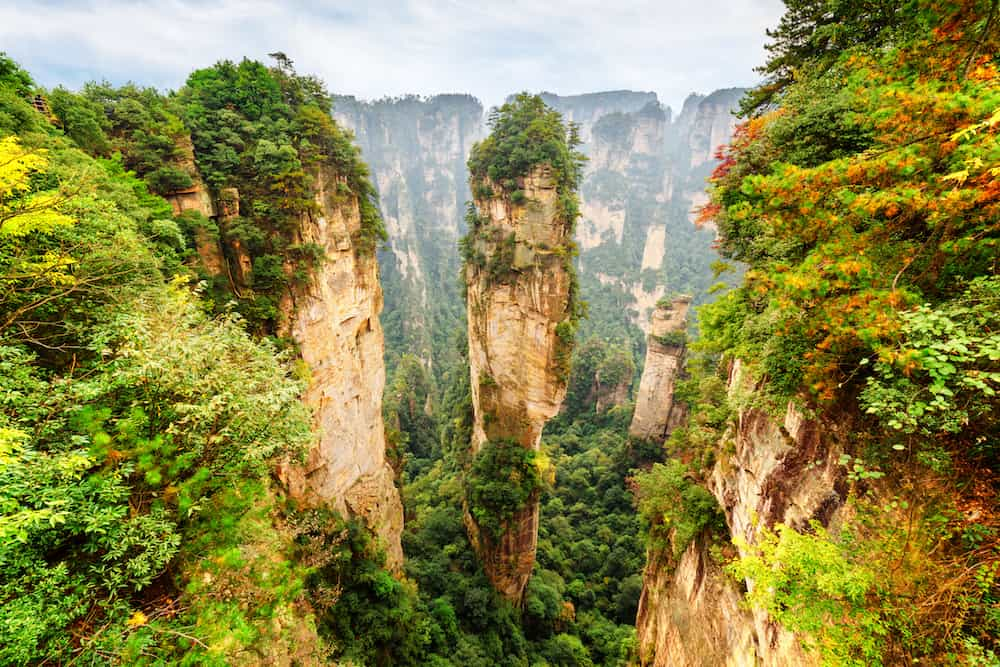 Amazing view of natural quartz sandstone pillar the Avatar Hallelujah Mountain among green woods and rocks in the Tianzi Mountains the Zhangjiajie National Forest Park Hunan Province China.