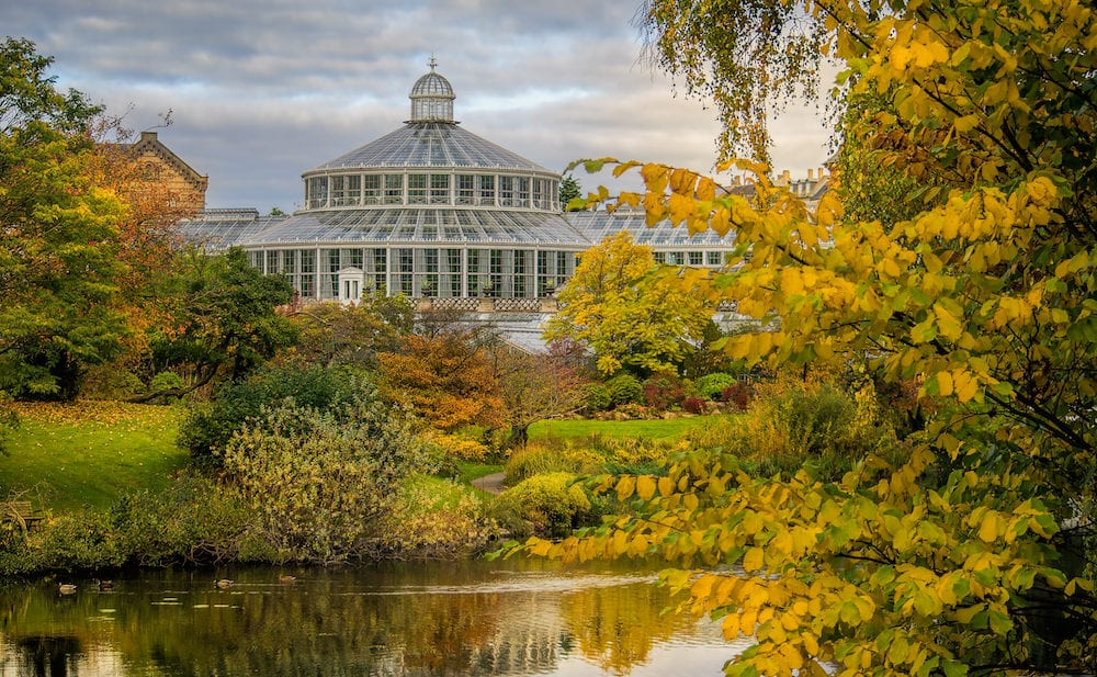 Botanical gardens with a lake during autumn in Copanhagen