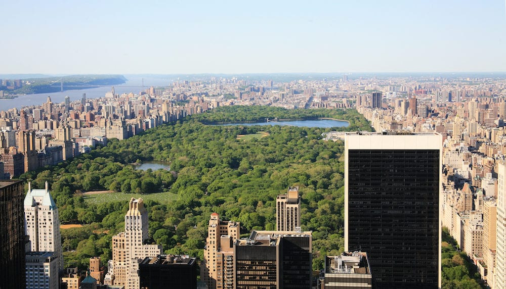 view in the central park in New York city