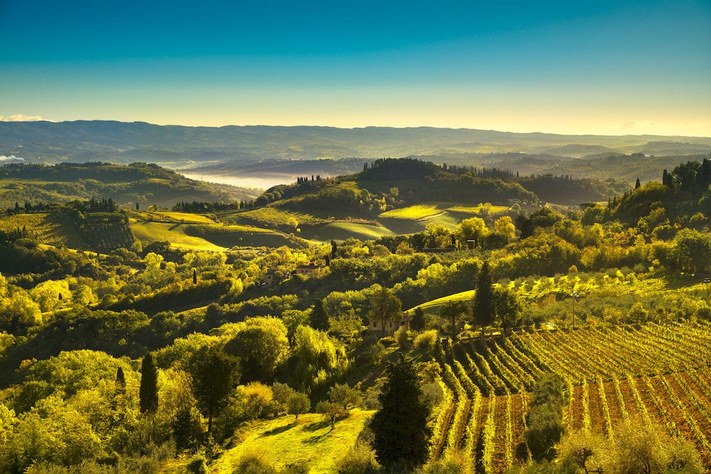Panoramic view of countryside and chianti vernaccia vineyards from San Gimignano on sunrise. Tuscany, Italy, Europe.