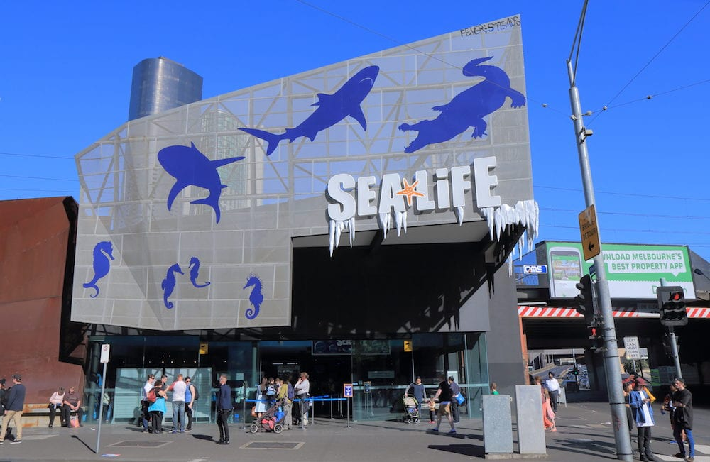 MELBOURNE AUSTRALIA - Unidentified people visit Sea Life Aquarium. Sea Life is a Southern Ocean and Antarctic aquarium in central Melbourne opened in 2000.
