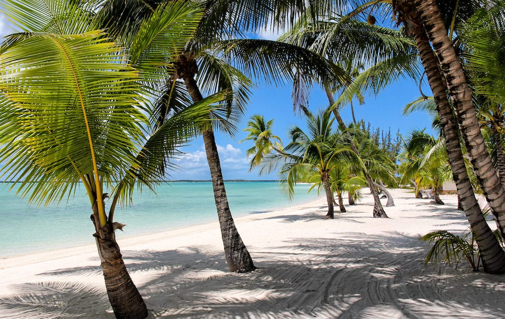 Beach with Palms at the Bahamas, Island of Andros