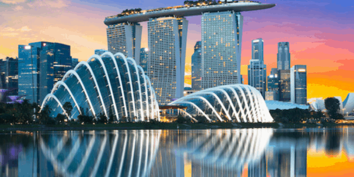 14 Fun Things to do in Singapore