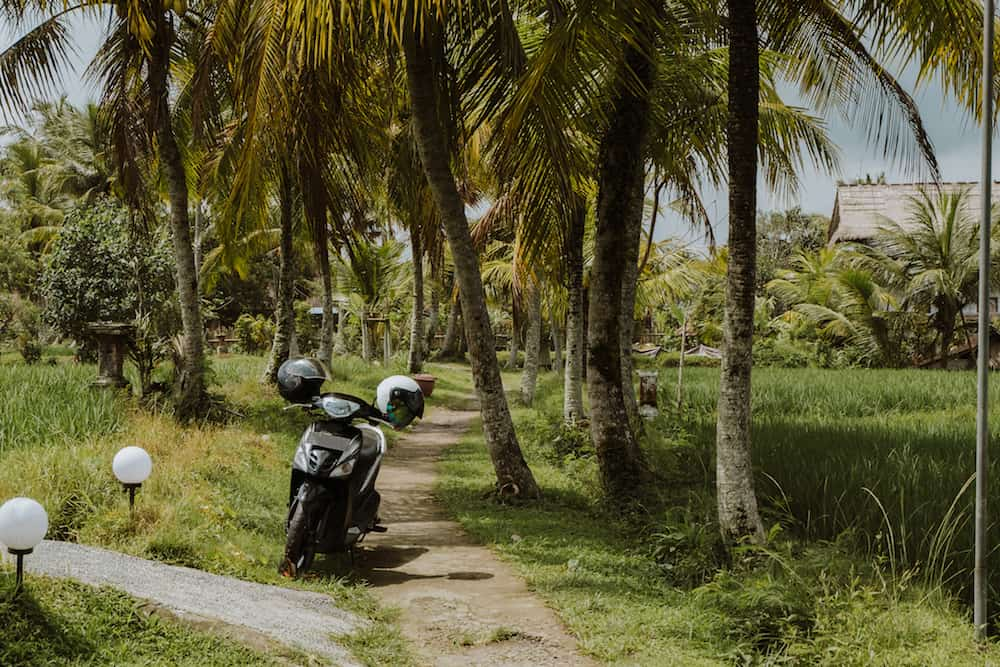 Motorbike is parked at rice terrace. Bali Indonesia