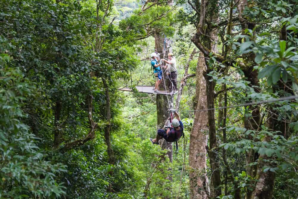 Monteverde Costa Rica - young adventurous man zip lining thru the cloud forest. Monteverde Costa Rica.