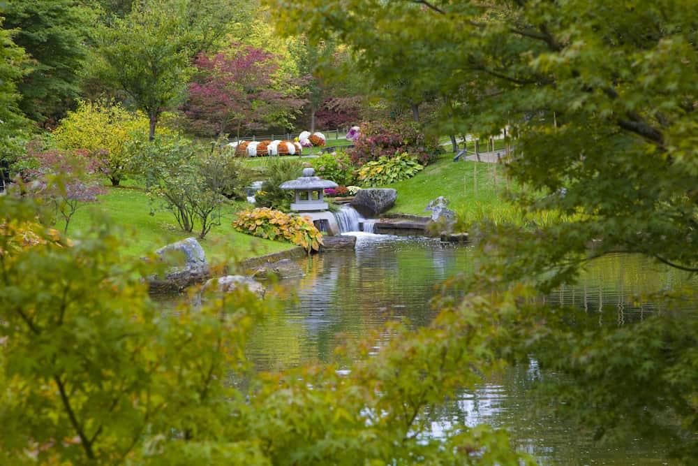 Small waterfall in Japanese Garden Hasselt Belgium