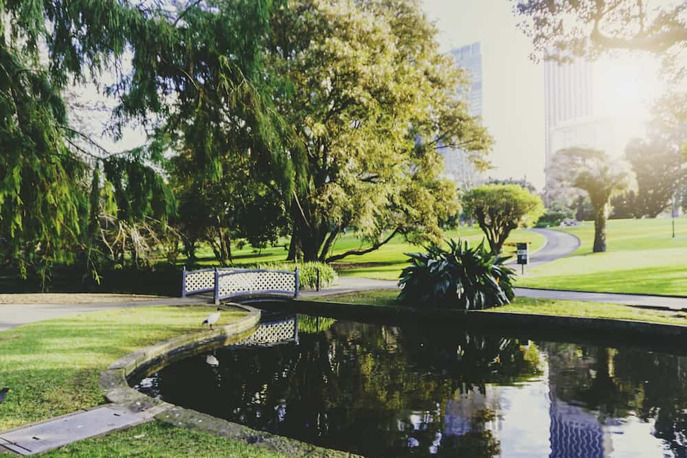 SYDNEY, AUSTRALIA - view of the Royal Botanic Gardens in Sydney CBD