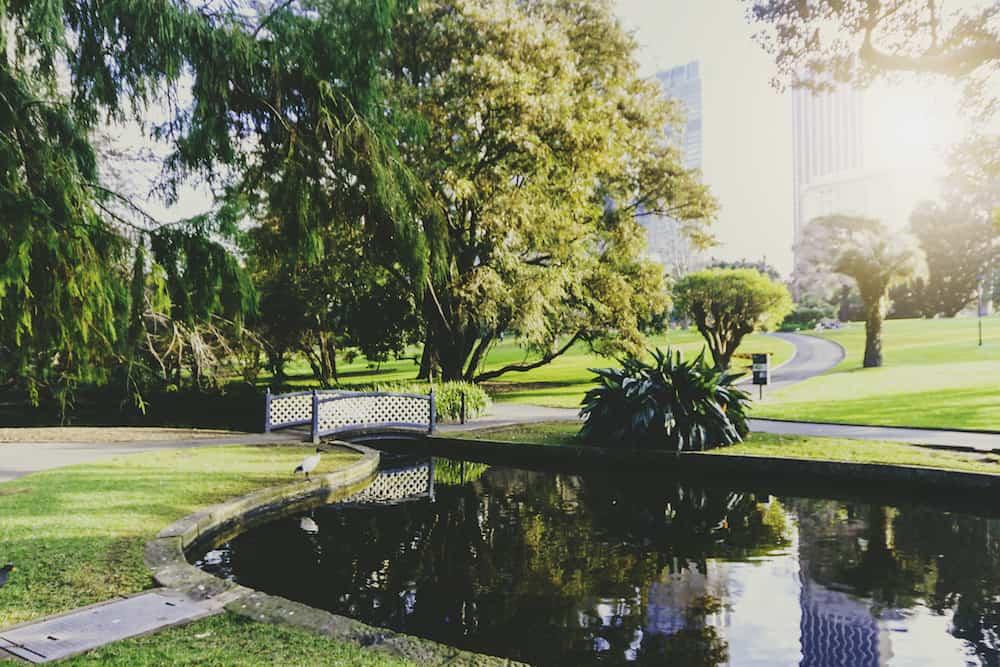 SYDNEY, AUSTRALIA - view of the Royal Botanic Gardens in Sydney CBD