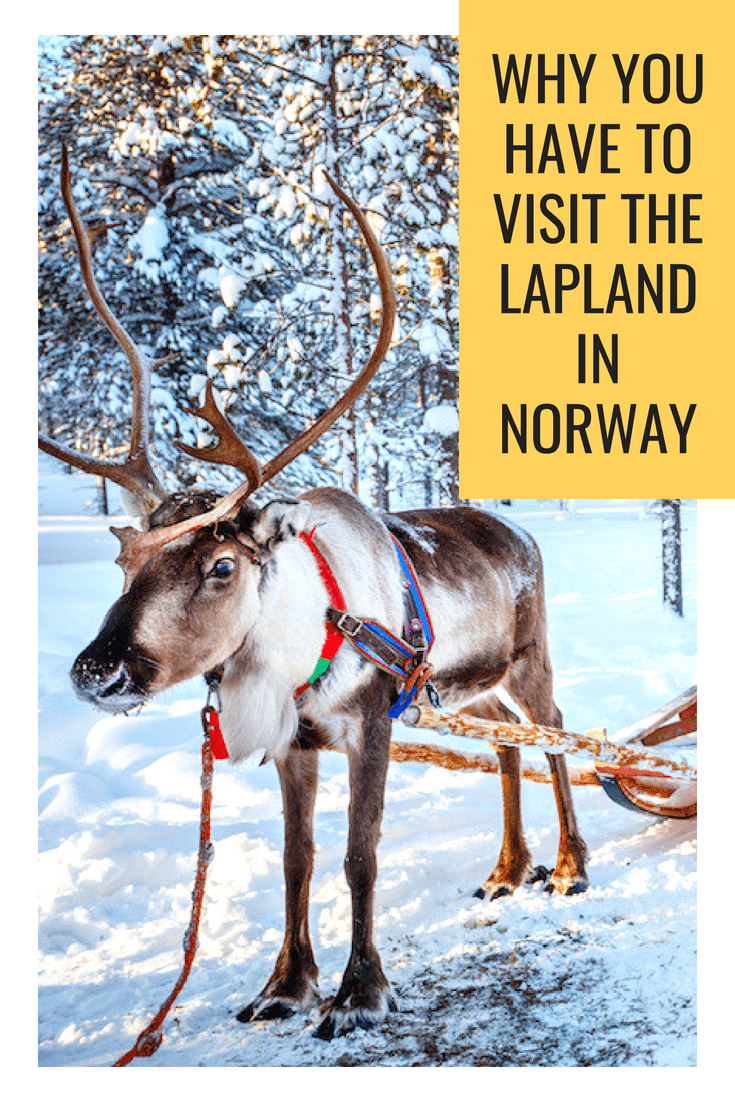 Why you have to Visit the Lapland in Norway