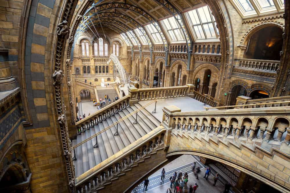The Natural History Museum in London, UK. LONDON, UNITED KINGDOM - The Natural History Museum houses a vast range of specimens of natural history, science specimens comprising 80 million items in 5 main collections