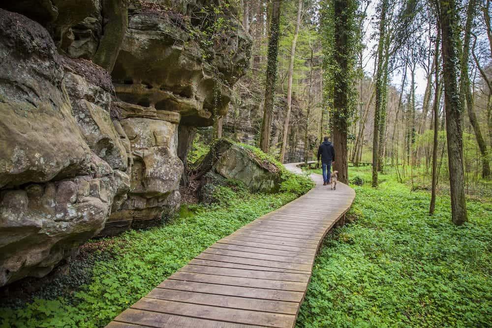 Mullerthal Trail Nature Landscape Petit Luxembourg Suisse Echternach