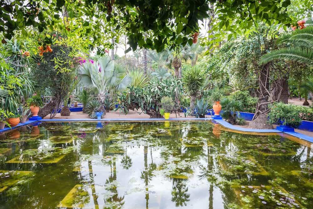 MARRAKECH MOROCCO - The Majorelle Garden is a botanical garden and artist's landscape garden in Marrakech Morocco.