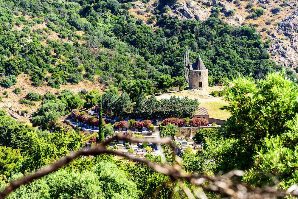 Moulin Saint Roch Grimaud Provence Mountains Nature Plants