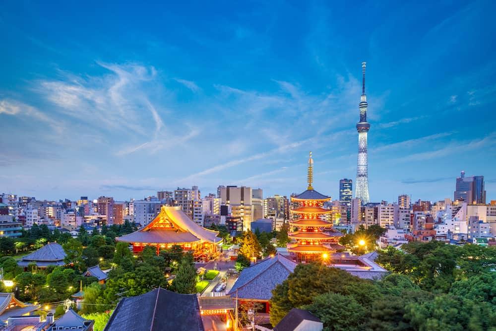 Tokyo, Japan - aerial view of tokyo city at night in japan