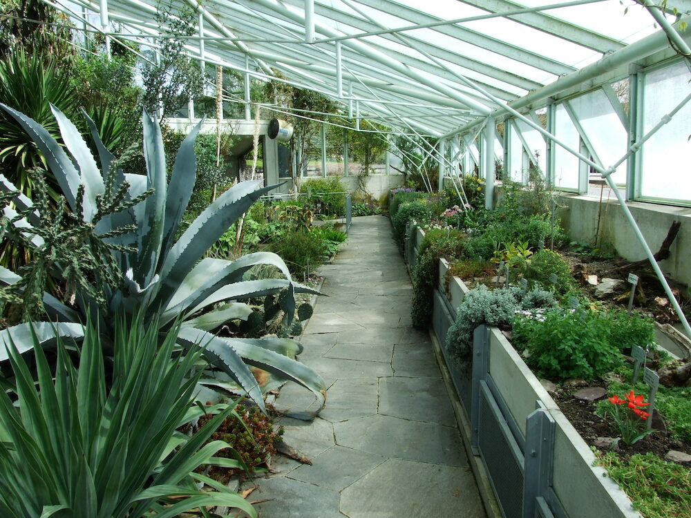 The greenhouse of the botanical garden in Zurich