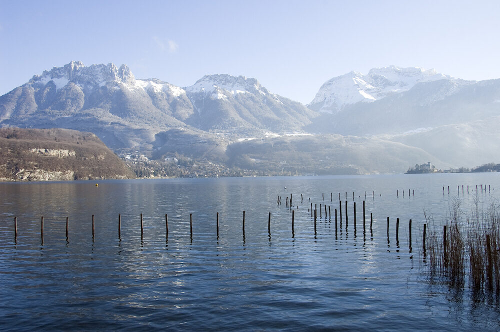 Lake of Annecy with poles and reeds and snowed mountains of Les dents de la Forclaz and La tournette