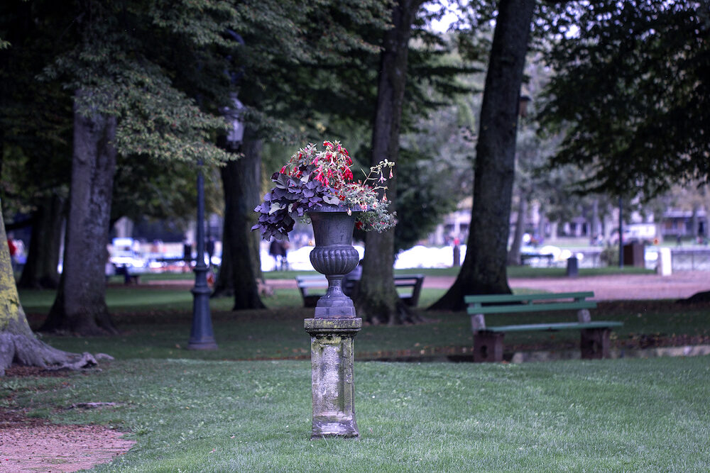 Pot of flowers in the summer park in Annecy