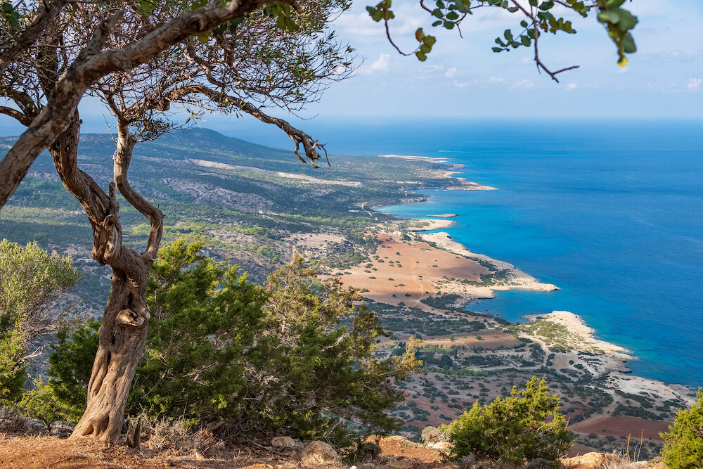 Aerial view of bays and the blue lagoon with turquoise water in the Mediterranean Sea as seen from Aphrodite hiking trail in Akamas peninsula, Cyprus