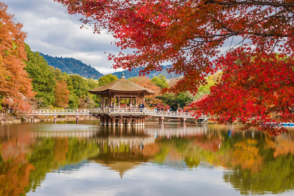 NARA, JAPAN - Tourists visit Nara public park in autumn, with maple leaves, pond and old pavilion in Nara, Japan