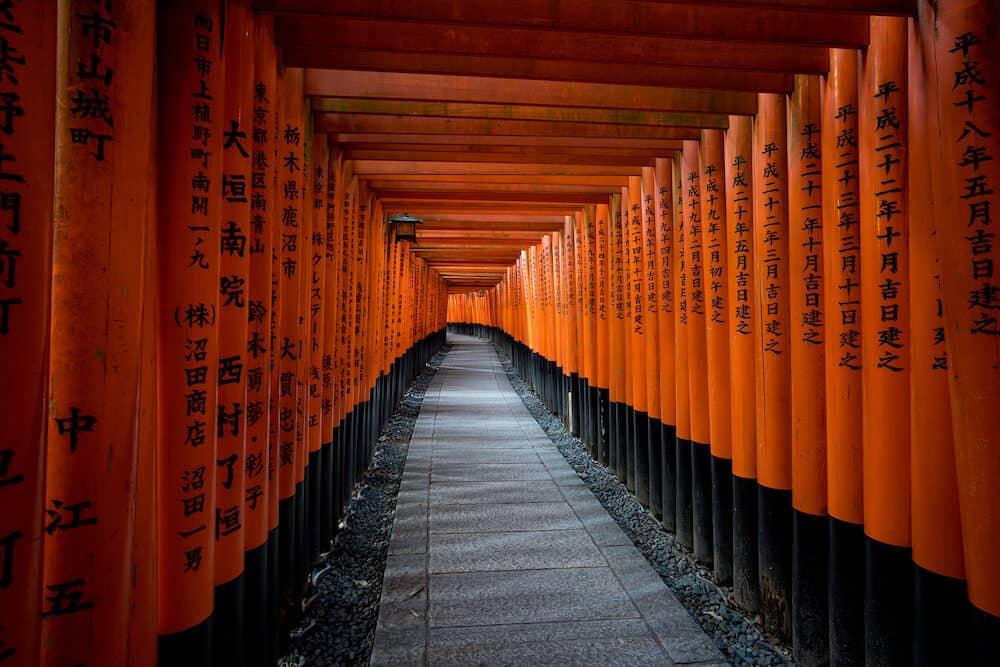 KYOTO, JAPAN -: Uphill walk on footpath of Red Torii in Fushimi Inari Shrine, sunlight at twilight, Kyoto, Japan. Fushimi Inari Shrine landmark.