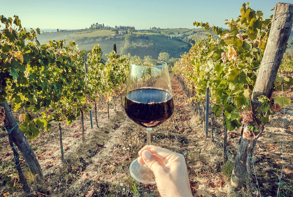 Glass of wine in hand of tourist in a natural landscape of Tuscany, with green valley of grapes. Wine beverage tasting in Italy during harvest.