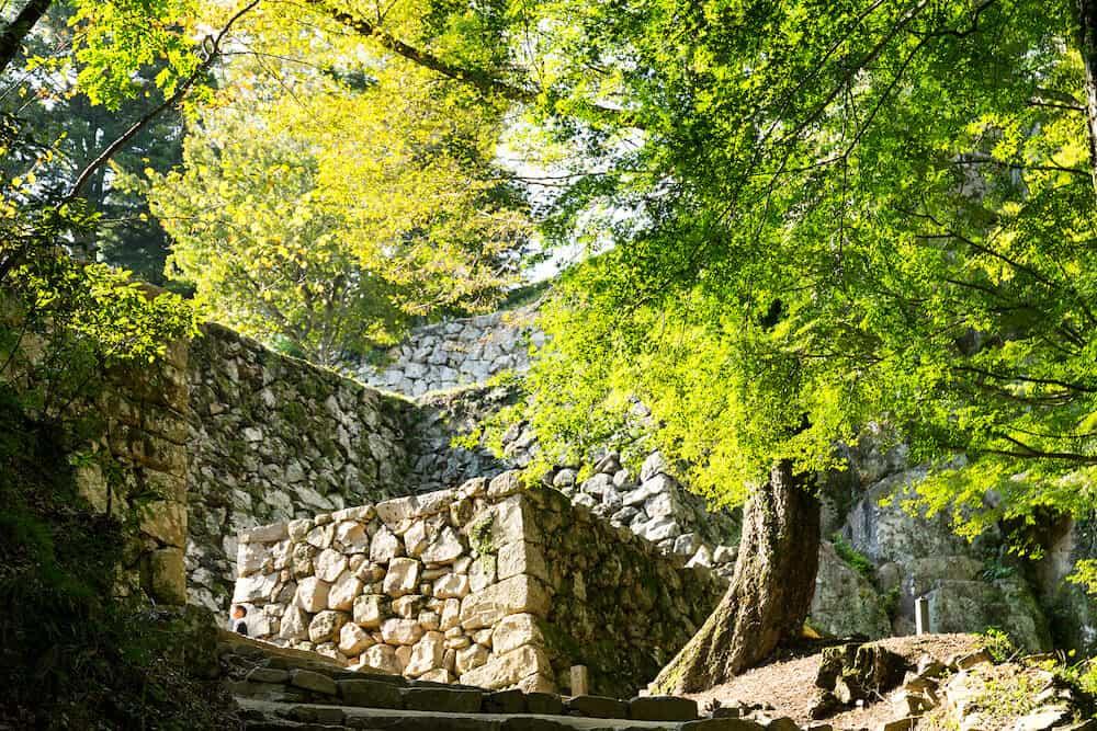Bitchu Matsuyama Castle Walls in Okayama