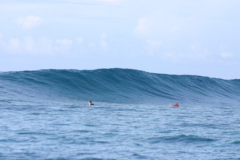 A blue wave about to break at a surf spot in Samoa - South Pacific