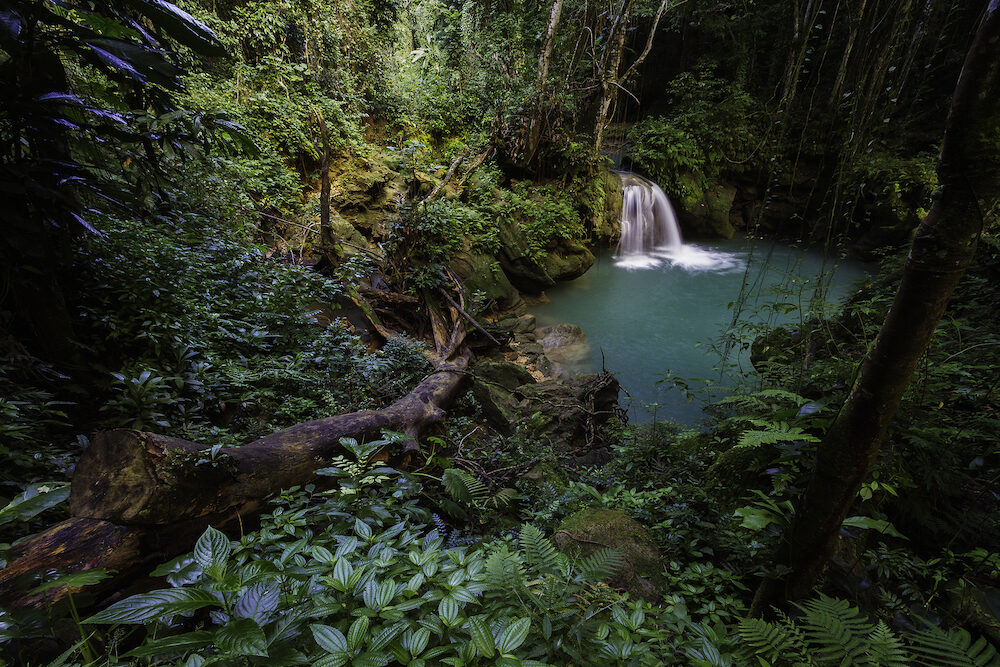 Beautiful waterfall in a lush tropical rainforest