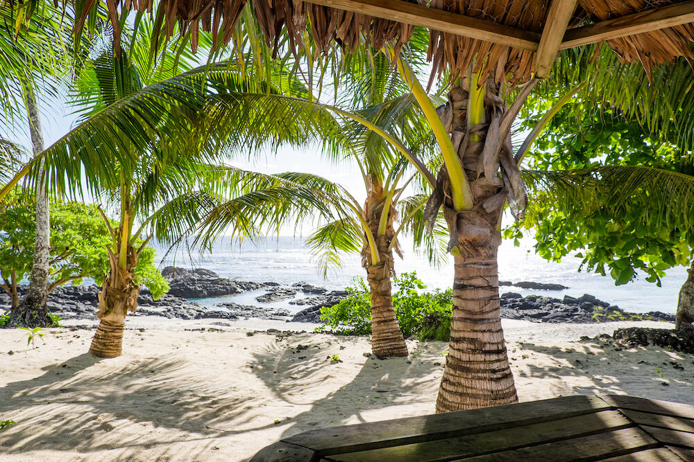 View from a tropical bar onto sandy and rocky beach with palm trees at Lefaga, Upolu Island, Western Samoa, South Pacific